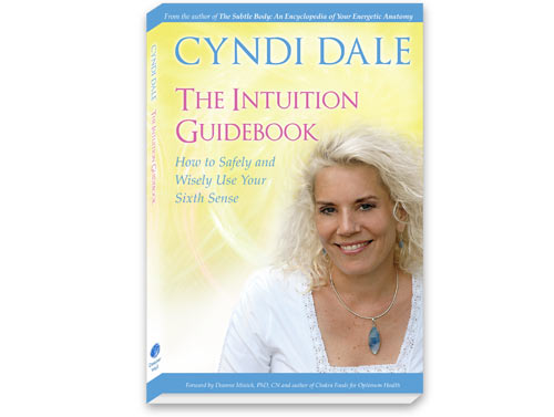 Book Cover for Cyndi Dale